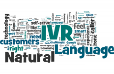 Natural Language IVR